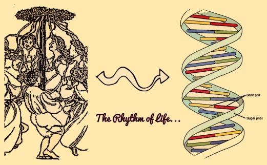 btbh rhythm of life
