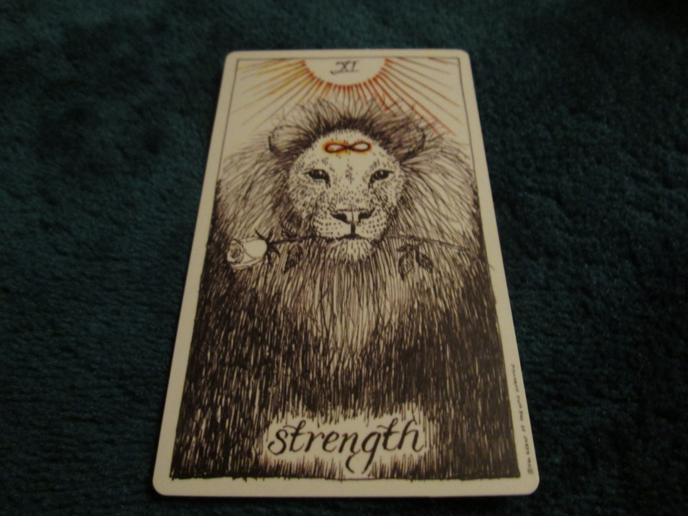 XI Strength ~ The Wild Unknown Tarot