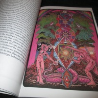 Epic Adventures with The Didactic Tarot...