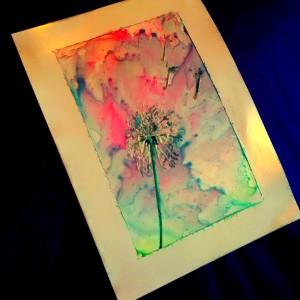 dandelion shoot